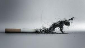 ԾԽԵԼՈՒ ՄԵՂՔԻ ՄԱՍԻՆ