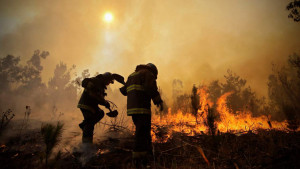 ECOLOGICAL PROBLEMS OF THE ARMED FORCES ACTIVITIES